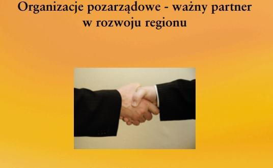 Organizacje pozarządowe – ważny partner w rozwoju regionu