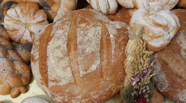 Święto Chleba w Tokarni