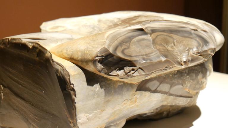 Kopalnie w Krzemionkach wpisane na Listę Światowego Dziedzictwa UNESCO