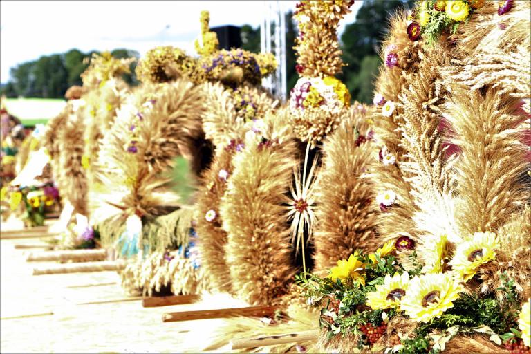 8 września w Opatowie odbędą się 19. Świętokrzyskie Dożynki Wojewódzkie