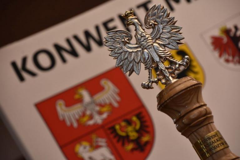 Marszałkowie z całej Polski debatowali w Rynie
