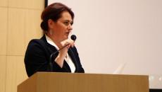 Xiv Sesja Sejmiku Województwa Świętokrzyskiego (38)