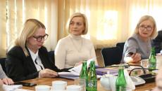 Obrady Komisji Strategii Rozwoju, Promocji I Współpracy Z Zagranicą (11)