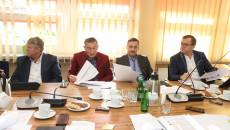 Obrady Komisji Strategii Rozwoju, Promocji I Współpracy Z Zagranicą (2)