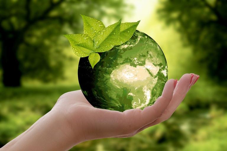 Ekologia Zielona Kula Ziemska