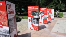 Wystawa - 5 plansz w rzędzie ustawione na placu