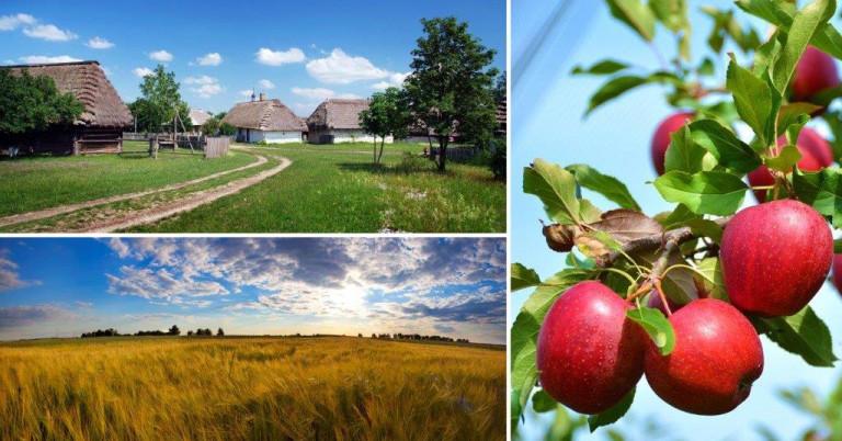 Krajobraz Polskiej Wsi Kolaż Poziomi Fotografii