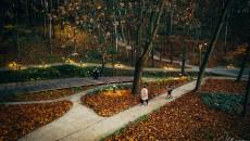 Spacer Po Parku W Jesienią