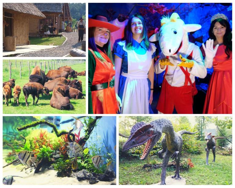 Kolaż Zdjęć Prezentujący Atrakcje Turystyczne. Makiety Dinozaurów, Postaci Bajkowe, Ryby Tropikalne, Bizony
