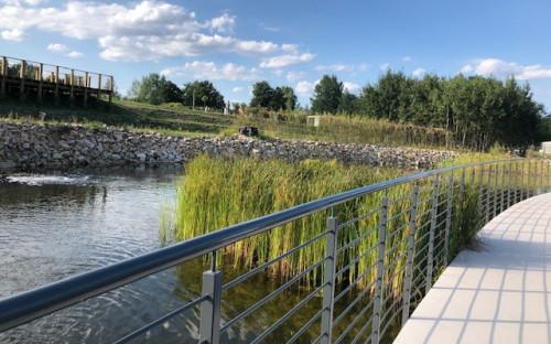 Roślinność Wodna I Błotna W Kieleckim Ogrodzie Botanicznym, widok z kamiennego mostka nad stawem, widoczny fragment balustrady