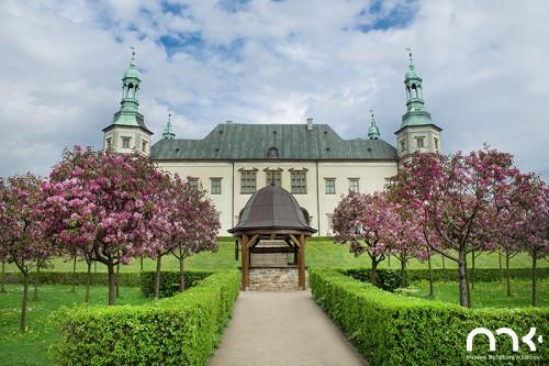 Zabytkowa studnia w Ogrodzie Włoskim Muzeum Narodowego W Kielcach, widok na ścieżkę, po bokach kwitnące drzewa śliwy, w tle budynek pałacu biskupiego