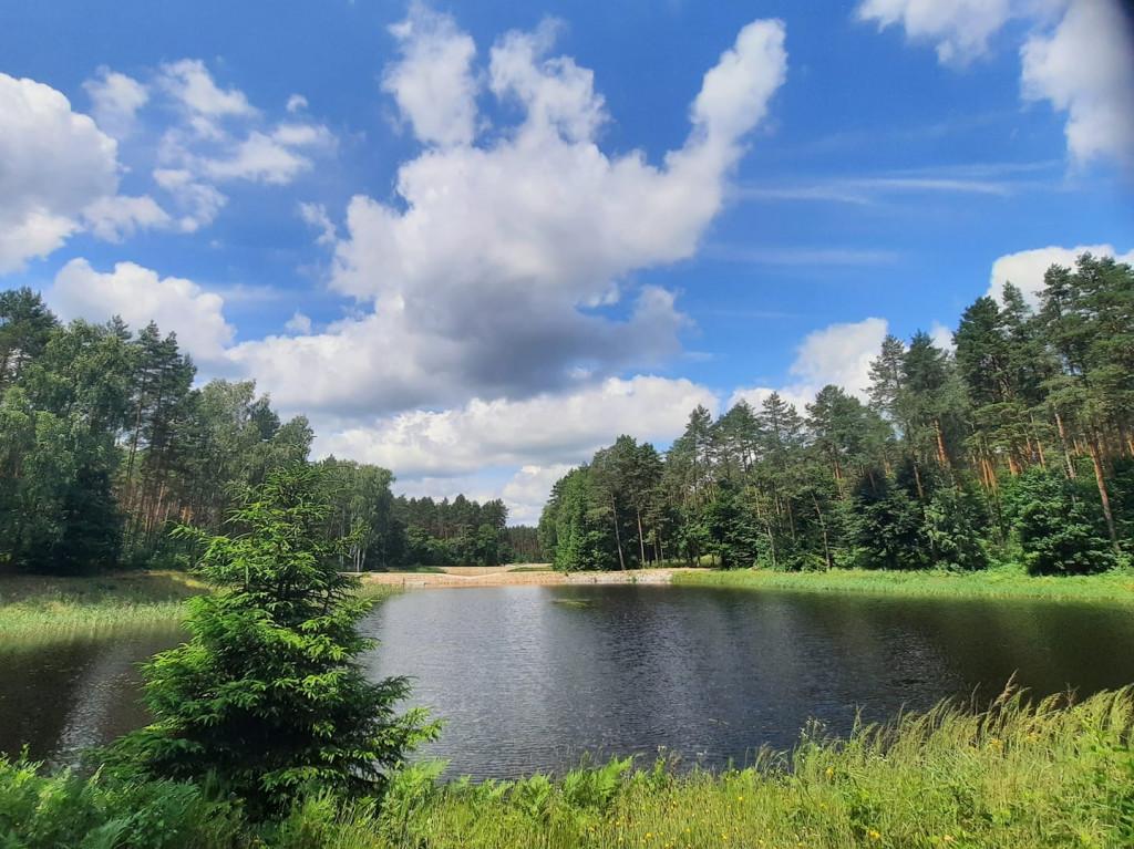 Błękitne, delikatne zachmurzone niebo. Jezioro i las dookoła, tereny Nadleśnictwa Daleszyce