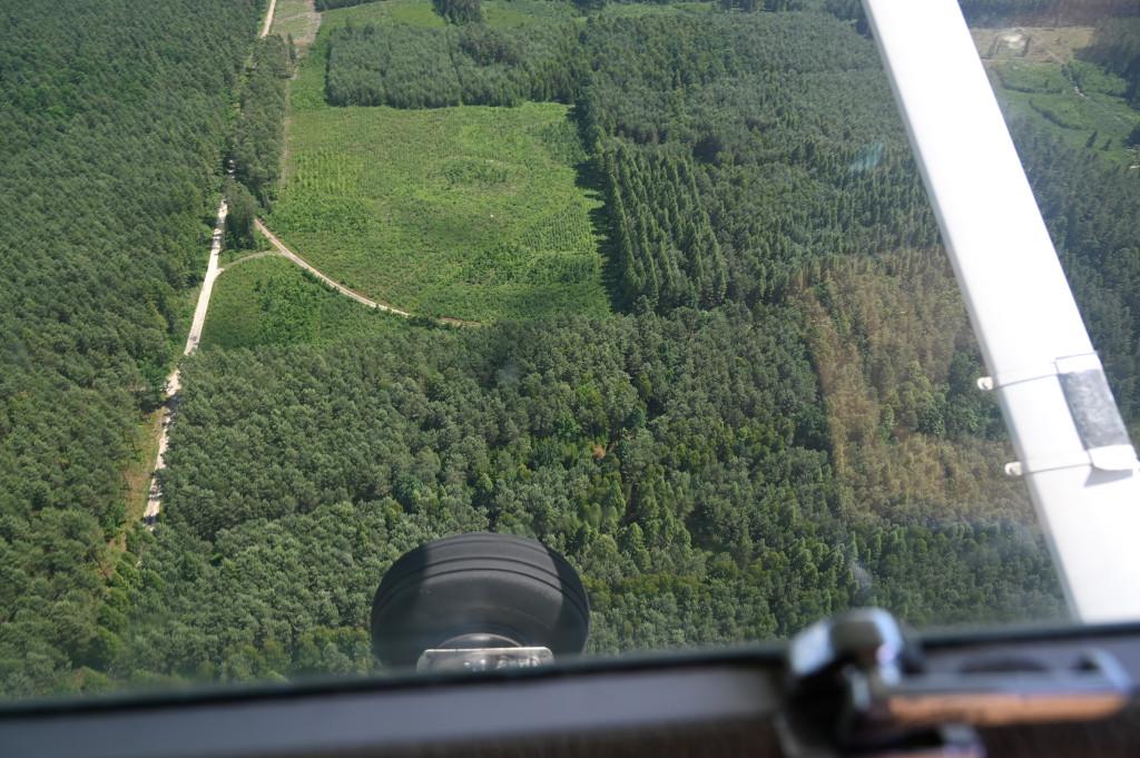 Polana leśna otoczona drzewostanem, obok droga, tereny Nadleśnictwa Radoszyce. Widok z samolotu