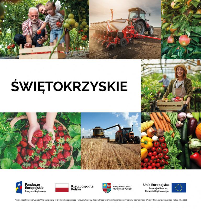 Plakat Promujący Konferencję Na Którym Są Warzywa I Owoce, Opatrzony Napisem Świętokrzyskie