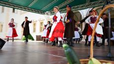 Zespół Pieśni I Tańca Kielce